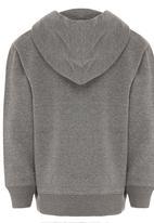 Billabong  - Team Wave Icon Hood Grey