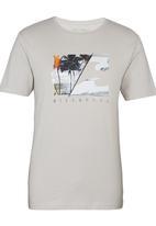 Billabong  - Paradise Slice SS Tee Grey