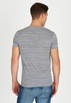 Polo Jeans Co. - Striped Printed T-Shirt Pale Grey