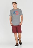 RVCA - Va Fade T-Shirt Grey