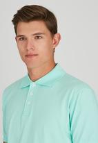 JCrew - Golf Shirt Light Green