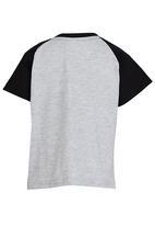 See-Saw - Raglan T-shirt with Print Grey