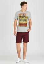 Sth Shore - Ayia Napa T-Shirt Pale Grey