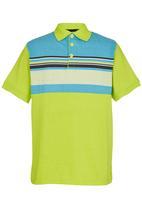 Retro Fire - Golfer Tee Green