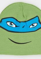 Character Fashion - Turtles Basic Beanies Green