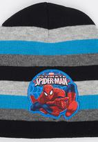 Character Fashion - Spiderman Basic Beanies Blue and Grey