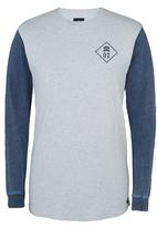 St Goliath - Theon Long Sleeve T-Shirt Grey