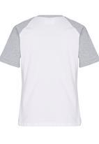 Rebel Republic - Raglan T-shirt Grey Melange