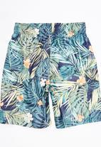 Soobe - Boys Swim Shorts Multi-colour