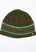 The North Face - The Blues Beanie Green