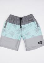 Lizzard - Board Shorts Multi-colour