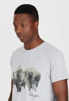 Wrangler - Bison T-Shirt Grey