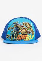 Character Fashion - Turtles Trucker Cap Multi-colour