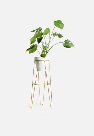 Standy planter set - white & gold