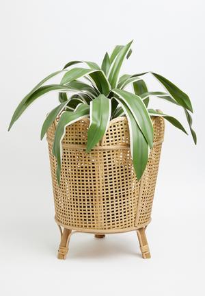 Nan bamboo planter - natural