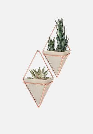Trigg Wall Vessel Set of 2