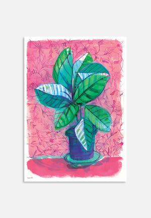 Sweet William Happy House Plant Art