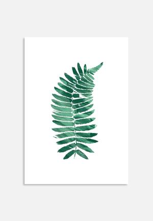 The Glass Mountain Fern Art