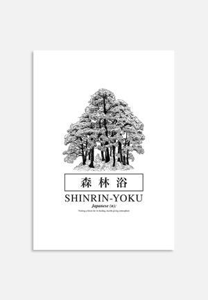 Sixth Floor Shinrin-yoku Art