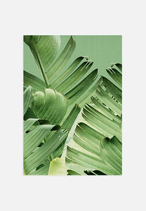 on sale fd22d 35b8a Banana Leaves 1