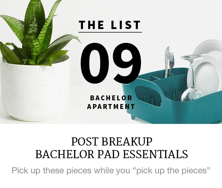 Post Breakup Bachelor Pad Essentials