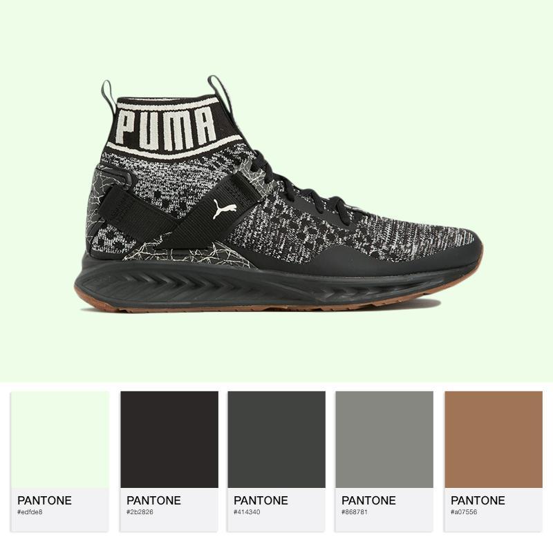 Puma Ignite Evoknit Hypernature - 19033703 - Black