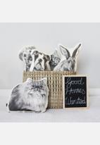 Ménagerie - Peter Rabbit Cushion